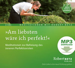 Am liebsten wäre ich perfekt! - MP3 Download